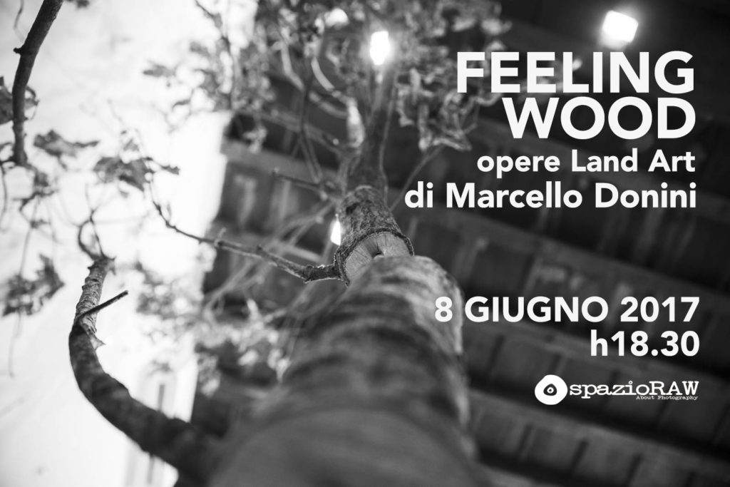 Feeling Wood, opere di land art di Marcello Donini in spazioRAW